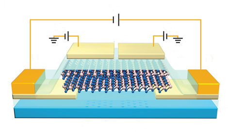 New paper in Nature Nanotechnology